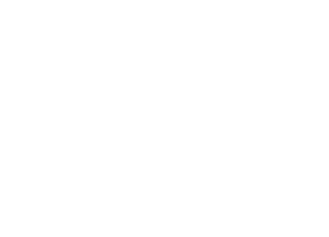 ACL Logo White The Web Design Guys